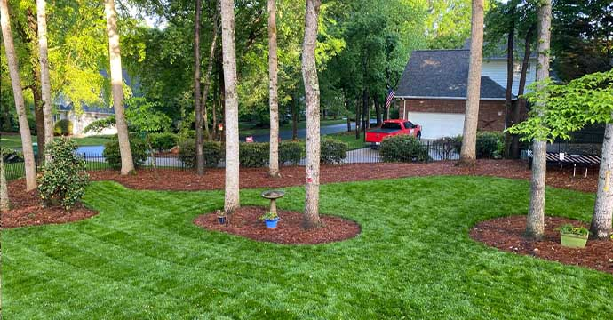 Beautifully trimmed bushes in Fort Mill, SC