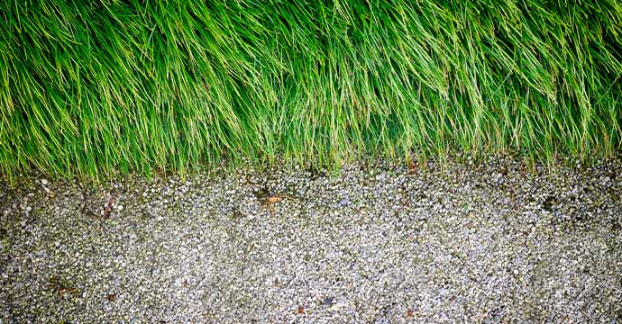 Grass seeds being spread at home in Mt. Holly, NC